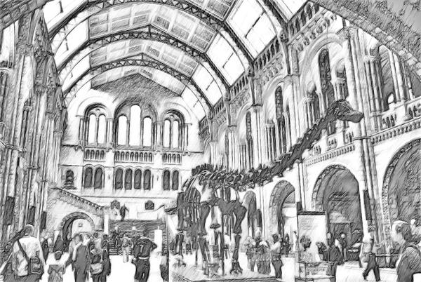 Natural History Museum London in South Kensington