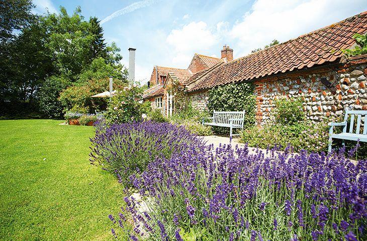 Outside Pear Tree Cottage in Norfolk
