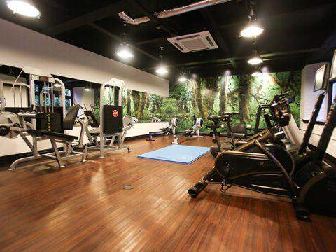 Ruthin Castle - Gym