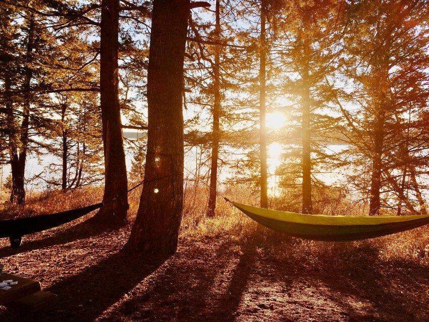 best heavy duty hammock