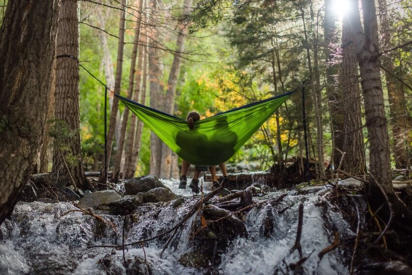 hammock with net for bugs insects
