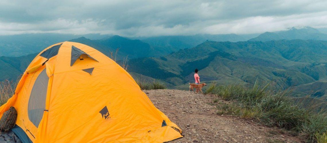 12 person tent